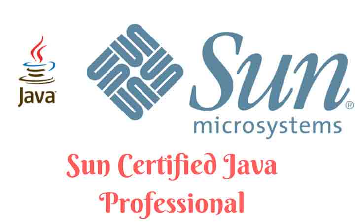 Sun Certified Java Professional (SCJP) Course